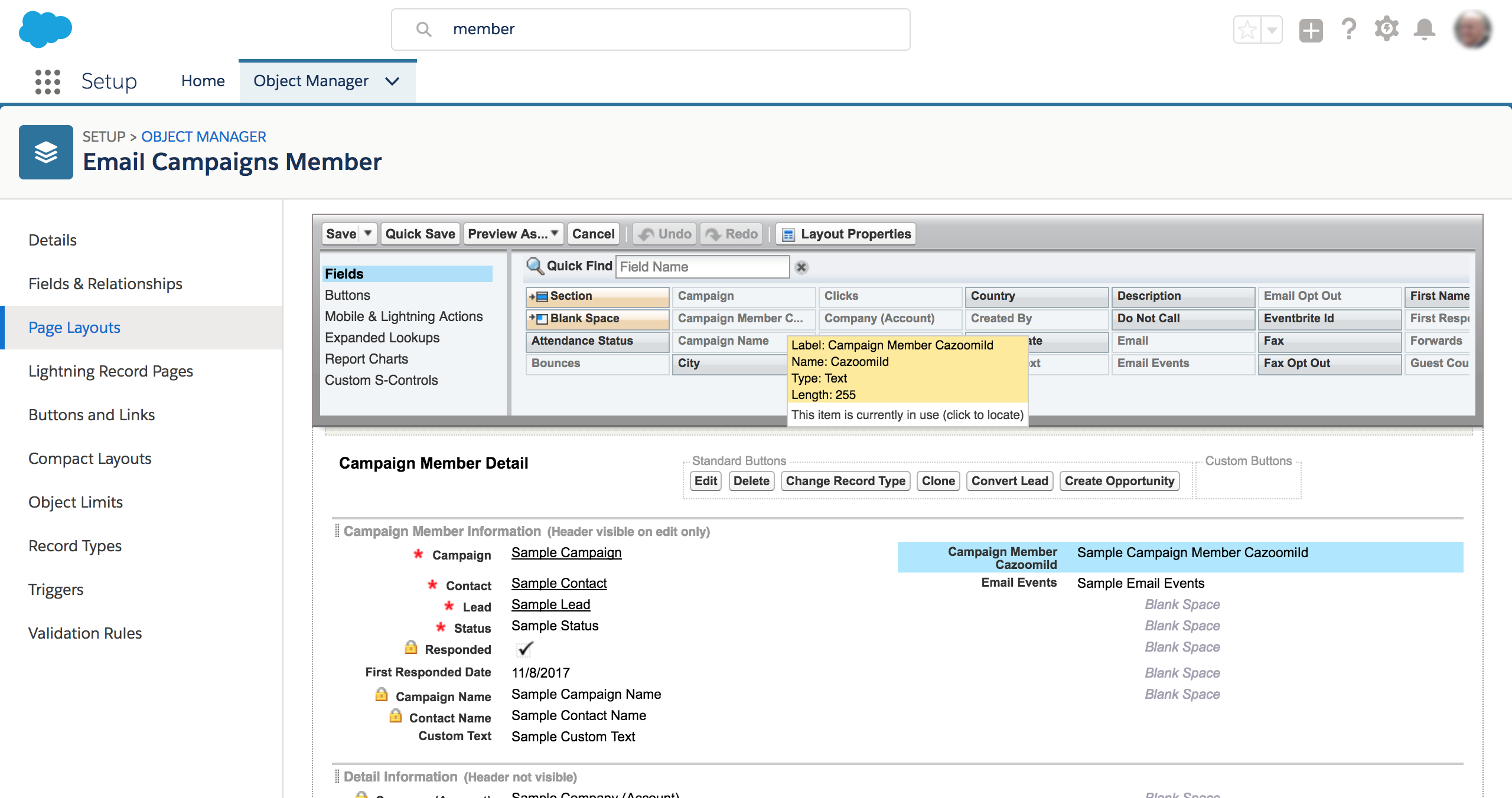 How to search in Salesforce | Salesforce Search
