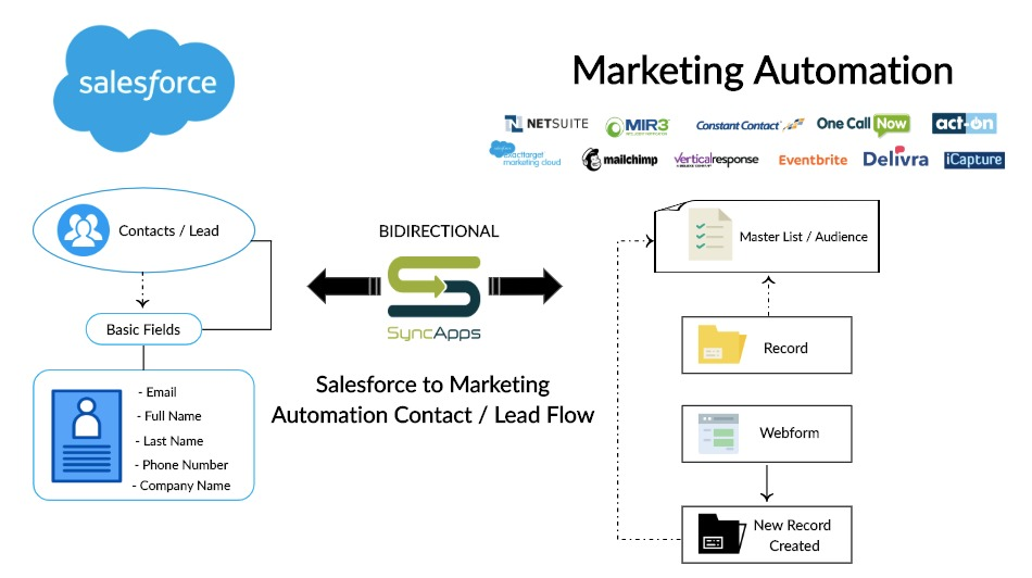 Salesforce_to_Marketing_Automation_Lead_Flow___Creately.jpg